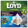 Loyd Ovocný čaj s příchutí borůvky & ostružiny 20 x 2g
