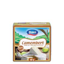 Sýr camembert