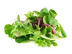 Salát mix 125g, vybrané druhy