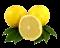 citrusy logo
